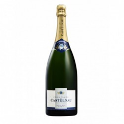 Champagne de Castelnau brut Reserve Magnum 1