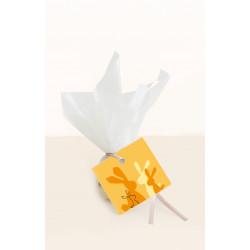 Berger Trufleu Praline Edelbitter Kokos vegan - 70% - 12 gramm